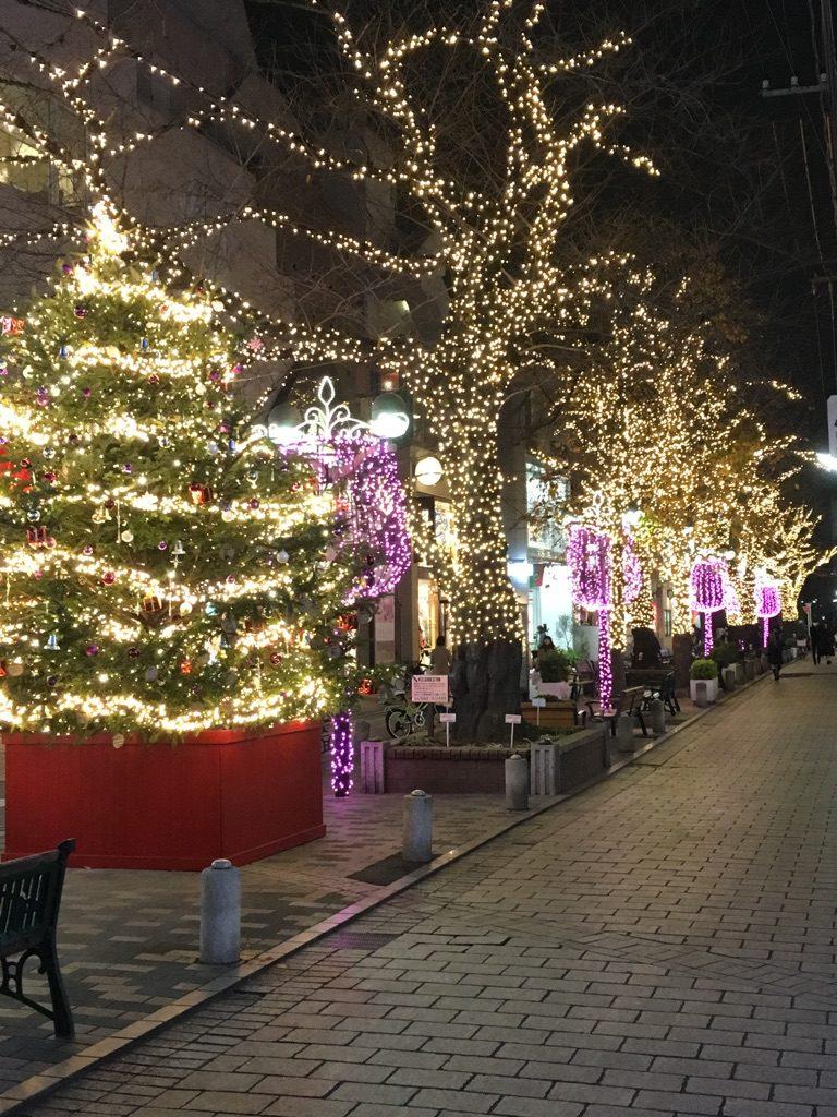 最後は自由が丘 緑道のイルミネーションより☆ Joyeux Noël☆☆